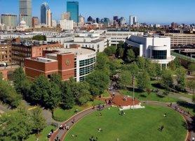 Best Undergraduate